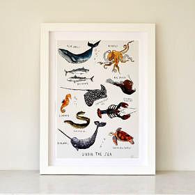 Under the Sea Fine Art Print